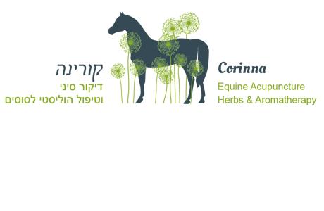 Logo corinna equine acupuncture