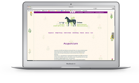 website corinna equine acupuncture