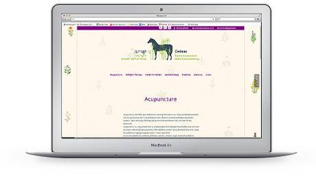 website corinna equine acupuncture
